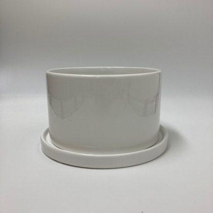 浅鉢陶器ホワイト植木鉢寄せ植えにおすすめ受け皿付き正面