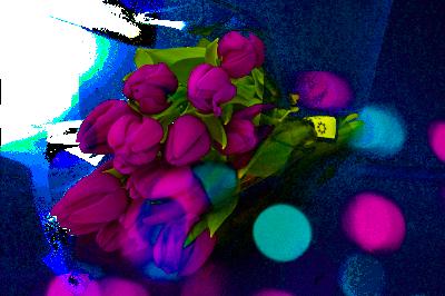 花束チューリップ