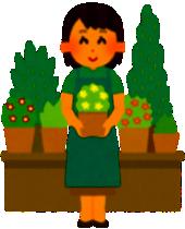 植木鉢のサイズの号数