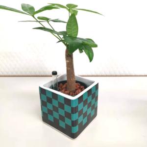 観葉植物鬼滅の刃市松模様の正方形植木鉢