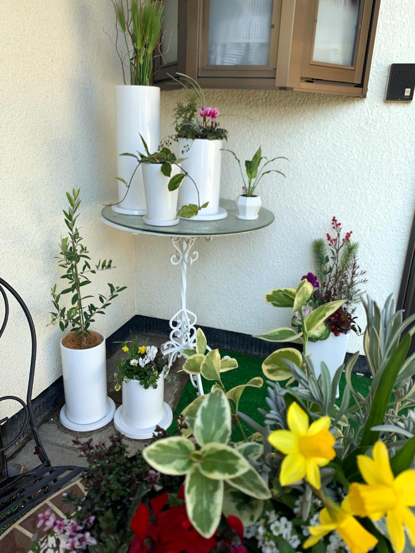 各種植木鉢