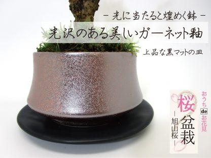 日本伝統釉薬の高級鉢皿付き