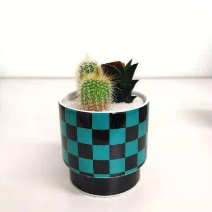 サボテン鬼滅の刃市松模様の丸型植木鉢