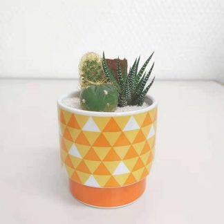 サボテン鱗柄の丸型植木鉢