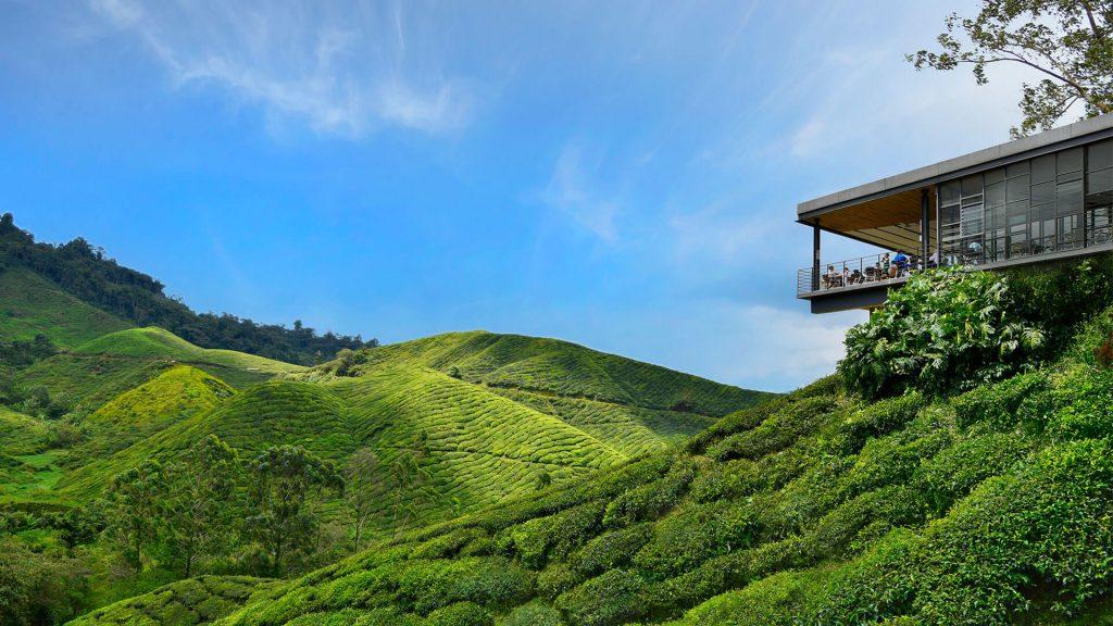 マレーシアキャメロン高原ハイランド美しい光景/風景