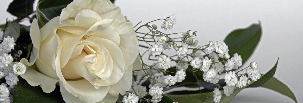 バラとカスミ草